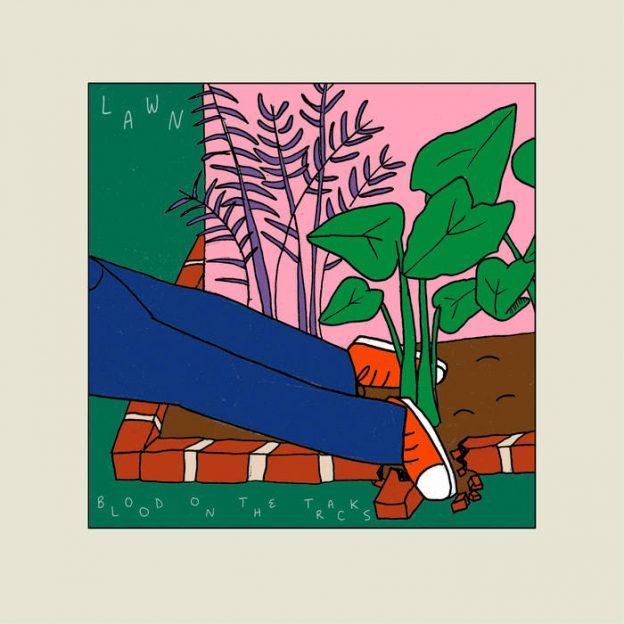wsum-lawn-album-nacctop5